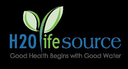 H2O Lifesource web development portfolio